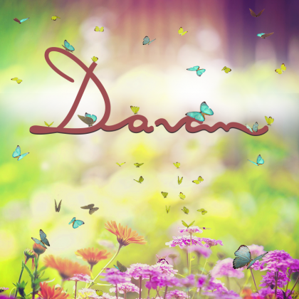 Banner Primavera Davan